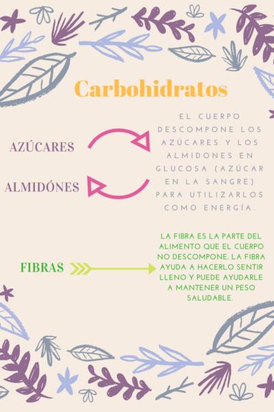 los-azucares-almidones-y-fibras